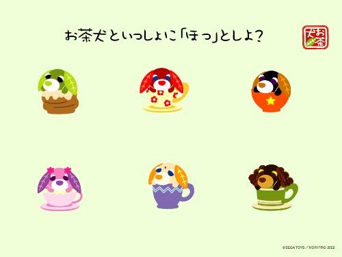 [贴图]【壁纸』可爱茶犬原版壁纸--手机搜狐社区