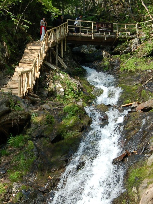 壁纸 风景 旅游 瀑布 山水 桌面 500_663 竖版 竖屏 手机