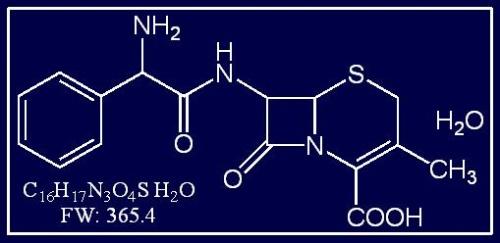 半合成青霉素与头孢菌素