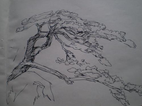 一组钢笔线条风景速写
