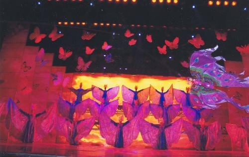 带进了七彩云南,来到了大理,来到了蝴蝶的故乡,仿佛让我们步入了梦乡.