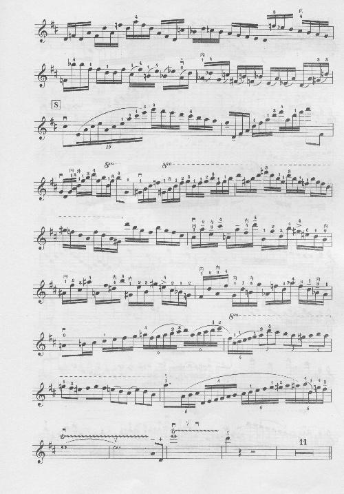 帕格尼尼 D大调小提琴协奏曲 第一乐章二胡移植谱