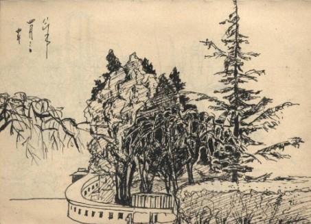 速写树丛的画法